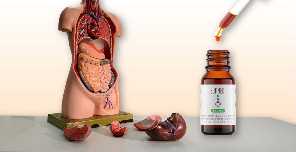 cbd oil bowel health