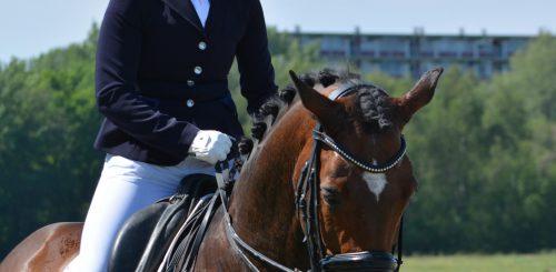 Paardrijden en CBD tegen Wedstrijdstress