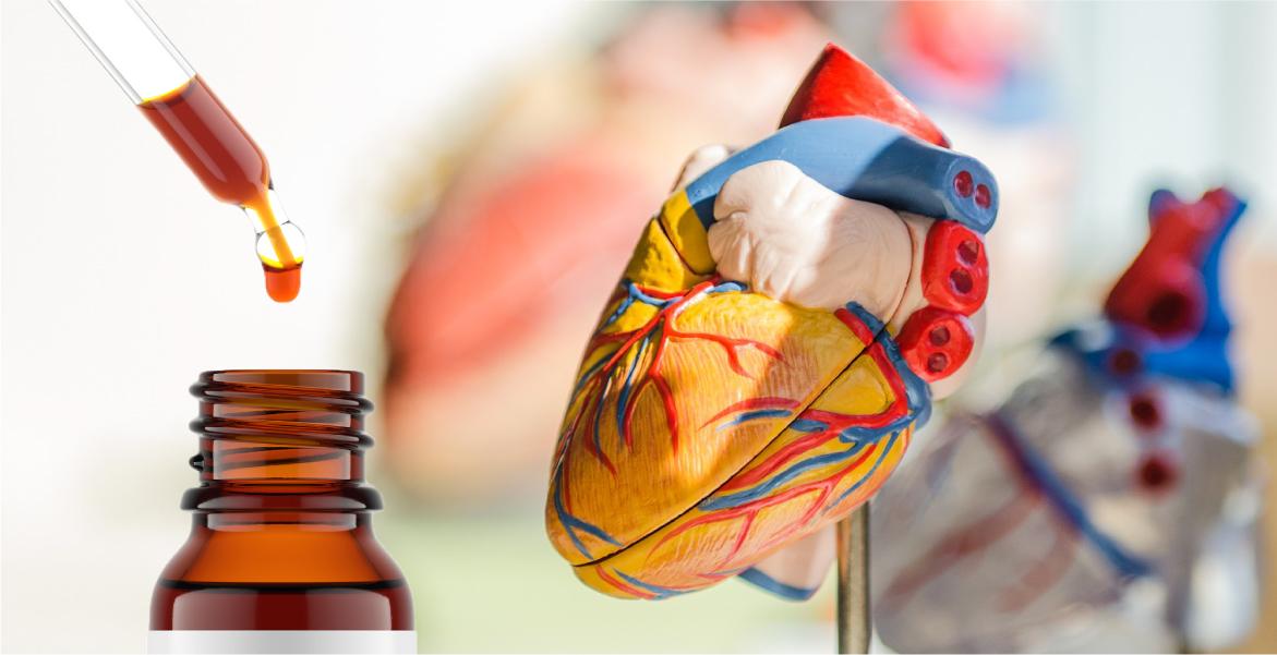 cbd heart disease